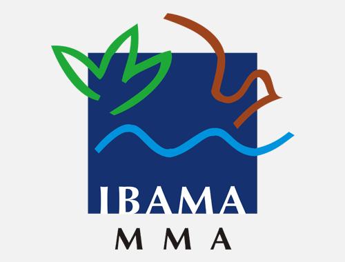 Ibama – Rapp (Relatório Anual de Atividades Potencialmente Poluidoras e utilizadoras de recursos Ambientais)